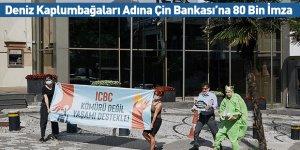 Deniz Kaplumbağaları Adına Çin Bankası'na 80 Bin İmza