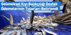 Geleneksel Kıyı Balıkçılığı Destek Ödemelerinin Tutarları Belirlendi