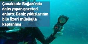 Çanakkale Boğazı'nda dalış yapan gazeteci anlattı: Deniz yıldızlarının bile üzeri müsilajla kaplanmış
