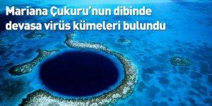 Mariana Çukuru'nun dibinde devasa virüs kümeleri bulundu