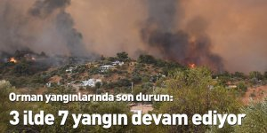 Orman yangınlarında son durum: 3 ilde 7 yangın devam ediyor