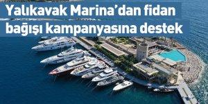 Yalıkavak Marina'dan fidan bağışı kampanyasına destek