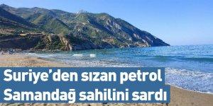 Suriye'den sızan petrol Samandağ sahilini sardı