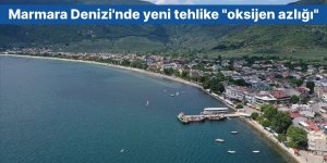 """Marmara Denizi'nde yeni tehlike """"oksijen azlığı"""""""