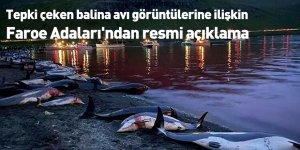 Tepki çeken balina avı görüntülerine ilişkin Faroe Adaları'ndan resmi açıklama