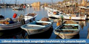 Lübnan ülkedeki balık zenginliğini keşfetmek için çalışma başlattı