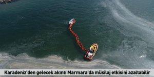 Karadeniz'den gelecek akıntı Marmara'da müsilaj etkisini azaltabilir
