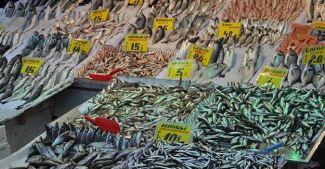 Lodos balık tezgahlarını vurdu