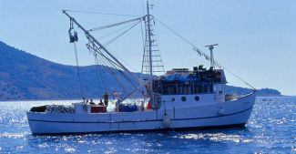 Balıkçılar sezon sonundan umutsuz