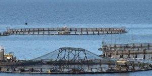 Türkiye ile Somali arasında balıkçılık anlaşması