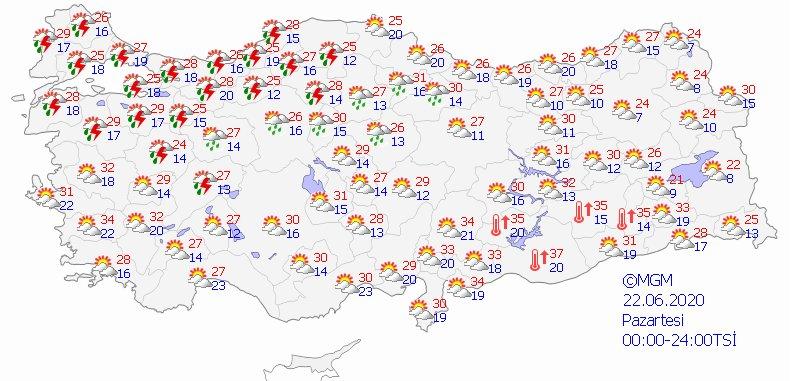 haritatahmingun1.png