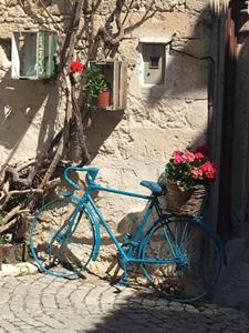 mavi-bisiklet.png