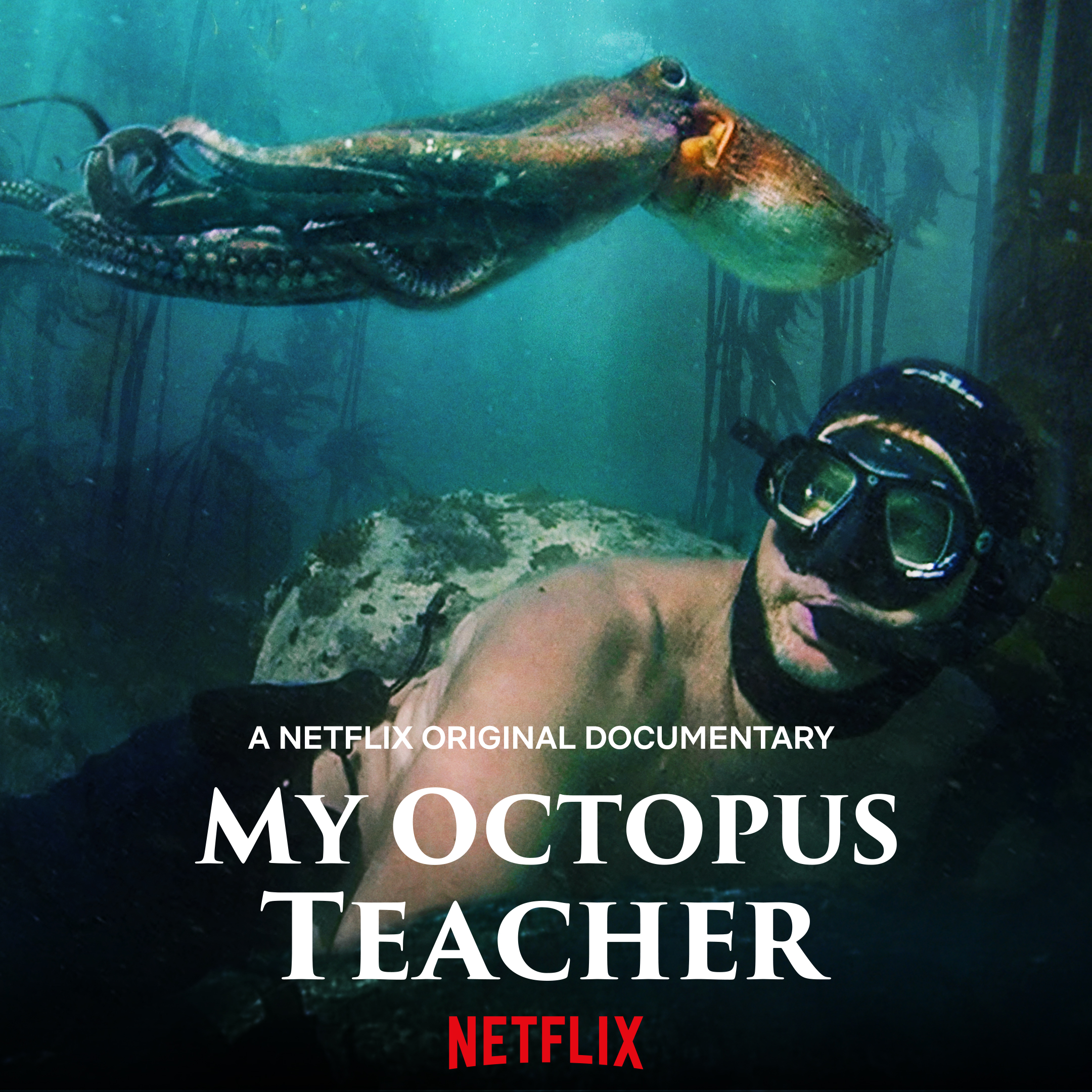 my-octopus-teacher.jpg