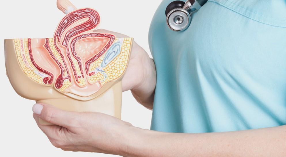 uroloji-neye-bakar.jpg